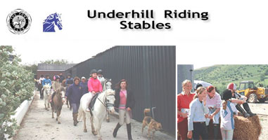 riding schools and stables